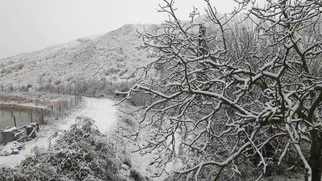 Neve a San Giorgio Ceparano nel faentino (Foto di Marco Cagnani)