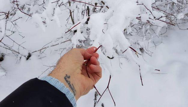Modena, neve a Pavullo