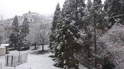 Neve a Brisighella (Ravenna) di Davide Missiroli