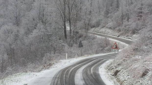 Neve sull'Appennino bolognese (Foto Dire)