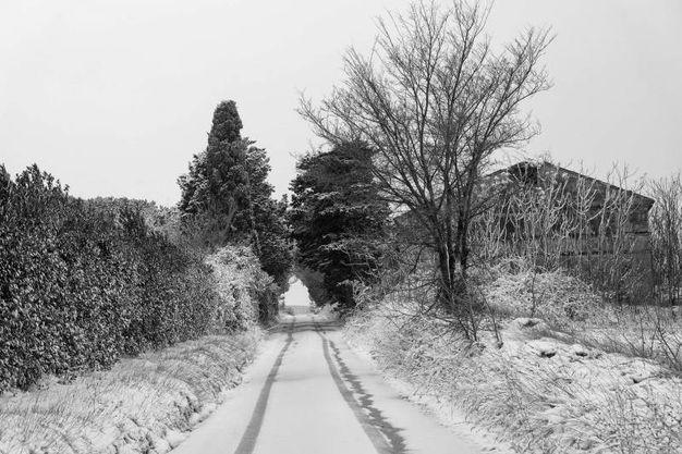La neve a Civitanova (foto De Marco)