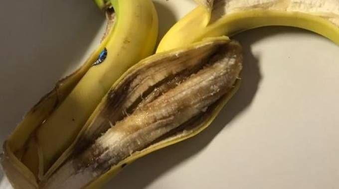 Frutta marcia