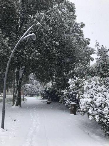 Imola, parco dell'Osservanza (foto di Simona)