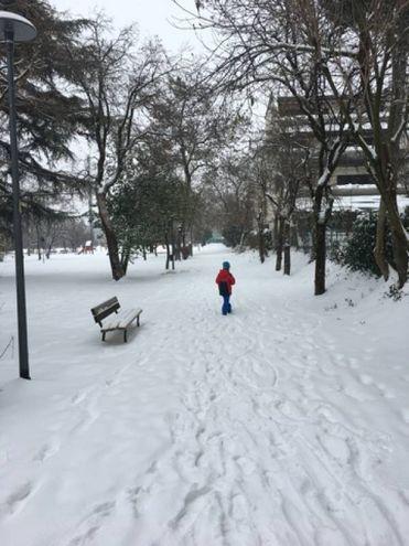 Ecco la neve a Casteldebole (foto di Giulia Giordani)