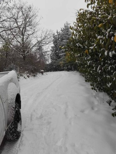 Neve a Casalecchio (Foto di Cristina Ghelli)
