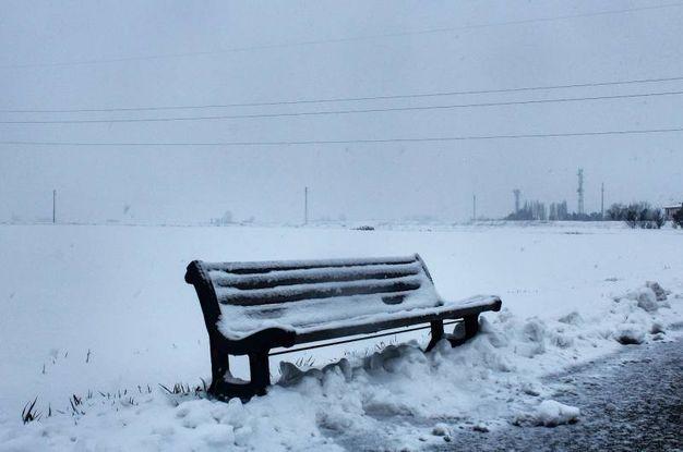 Neva a Sala Bolognese nella foto di Antonio Grasso