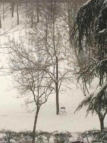 Neve al Fossolo, a Bologna (Foto di Tiziana Di Salvatore)