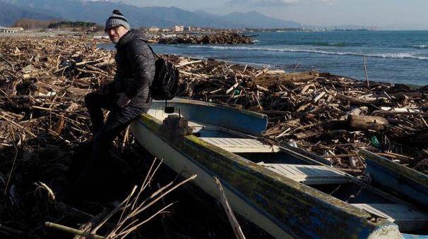 Il legname accumulato sul litorale da Marinella a Fiumaretta dopo la mareggiata di dicembre