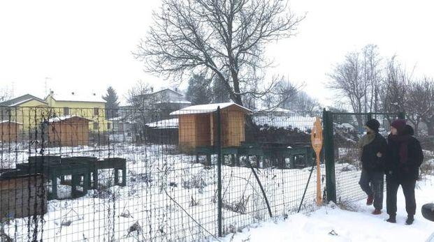 Gli orti sociali ricavati alla frazione Triulza attendono ancora di essere messi a frutto