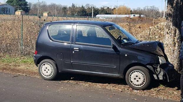 La Fiat 500 dell'anziana finita contro l'albero