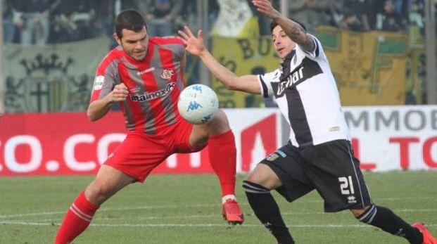 La Cremonese vuole tornare a quella vittoria che manca dal 20 gennaio