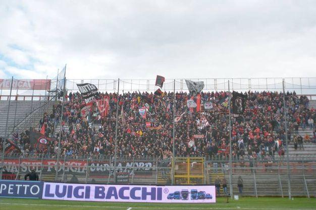 Perugia-Foggia (foto LaPresse)