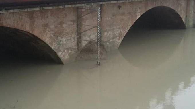 Il fiume Enza a Sorbolo