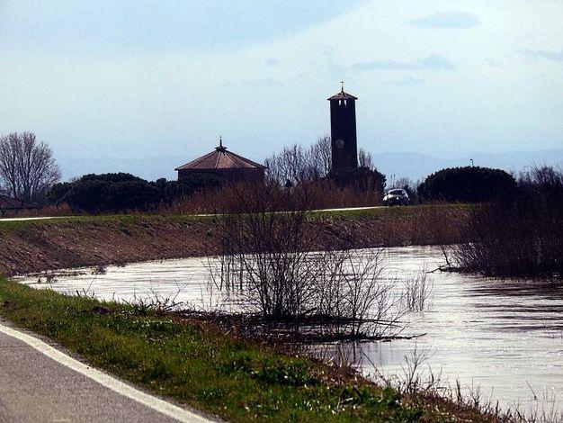 Il fiume Santerno questa mattina a San Bernardino di Lugo (Scardovi)