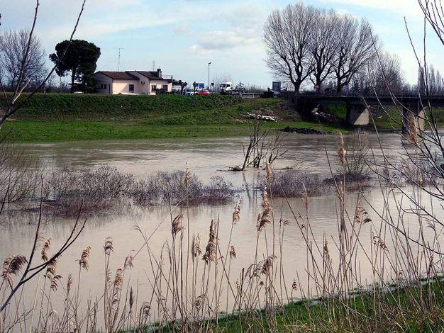Zona ponte della Bastia al confine tra le province di Ravenna e Ferrara (Scardovi)