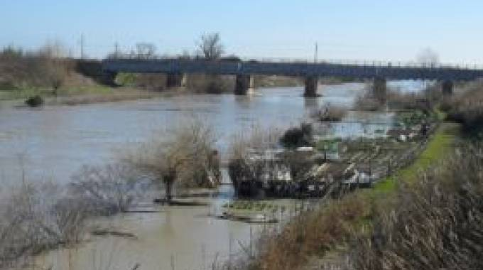 Situazione dei fiumi a Ravenna