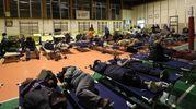 La palestra è stata allestita dalla Protezione civile (fotoPrint)