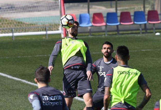 Esercitazioni tecnico-tattiche sul campo per i giocatori del Bologna (foto Schicchi)