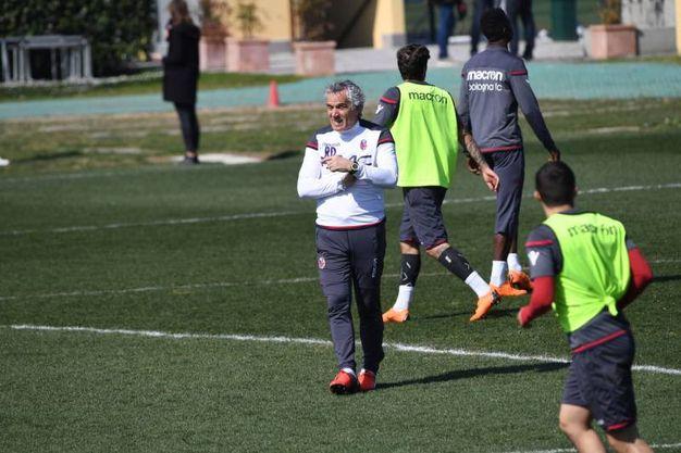 La seduta di allenamento del Bologna al Centro tecnico Niccolò Galli di Casteldebole (foto Schicchi)
