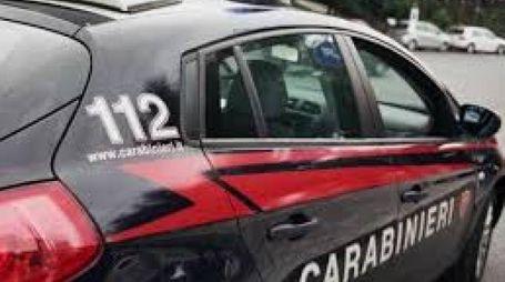 I carabinieri li hanno smascherati