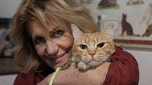 Giulia Pasqualetti con uno dei suoi gatti