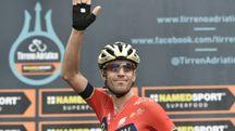 Vincenzo Nibali è il vincitore della Milano-Sanremo 2018 (LaPresse)