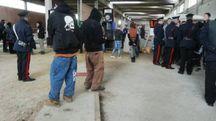 FUORI LEGGE I controlli dei carabinieri all'interno del magazzino