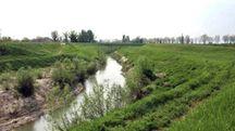 L'argine del fiume Lamone