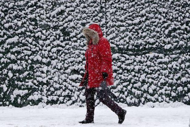 La neve di primavera nel New Jersey (Ansa)