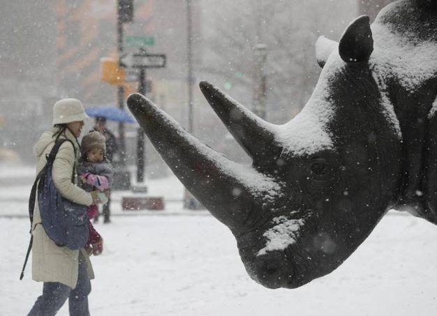 Bufera di neve a New York (Ansa)