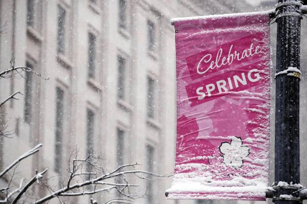 La 'festa di primavera' pubblicizzata a Whashington (Ansa)