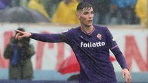 Nikola Milenkovic durante Fiorentina-Benevento (Germogli)