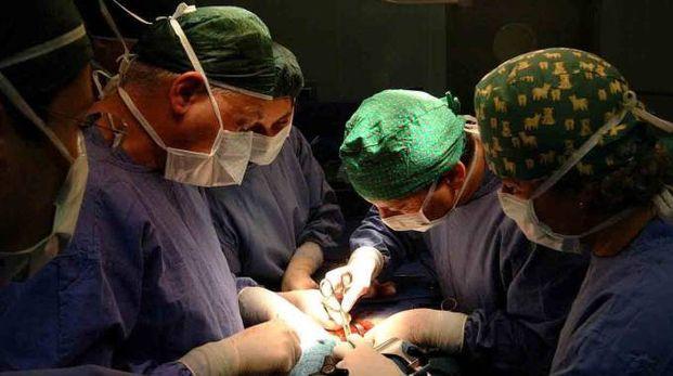 Un'operazione chirurgica (foto di repertorio)