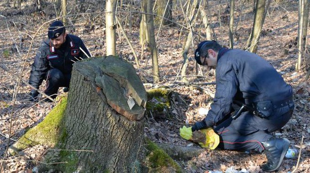 Controlli dei carabinieri nei boschi del Basso Varesotto