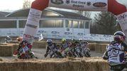 Rally Drift Show:  (Fotoprint)