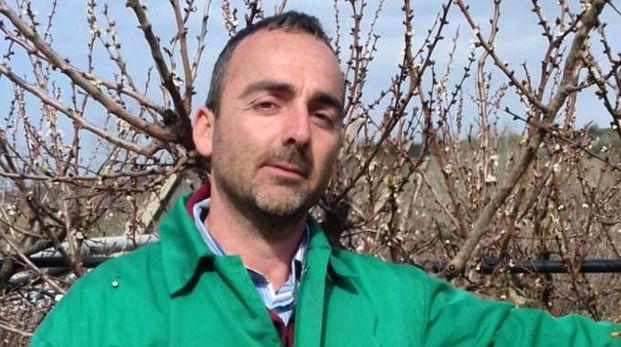Un agricoltore davanti a un albero di albicocche