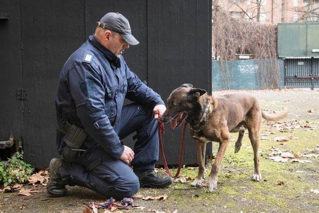 In Italia, oltre alla Polizia Municipale di Bologna, si contano sulle dita di una mano le altre polizie locali che utilizzano questo sistema all'avanguardia