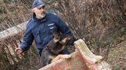 I cani in forza al nucleo dei cinofili della Polizia Municipale di Bologna