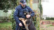 Il legame indissolubile tra il vigile e il suo cane