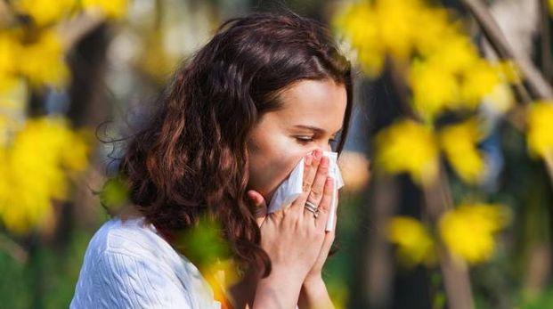 Allergia, croce della primavera