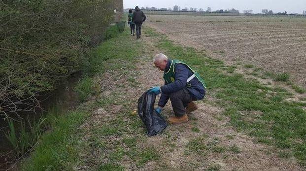 A dare l'allarme una guardia volontaria del Servizio di vigilanza ambientale di Legambiente di Ferrara