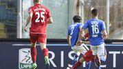 Il gol del pareggio di Melchiorri al 49' s.t. (foto LaPresse)