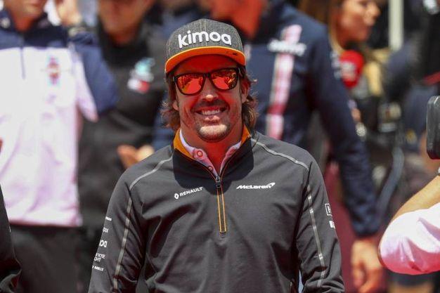 Alonso 6