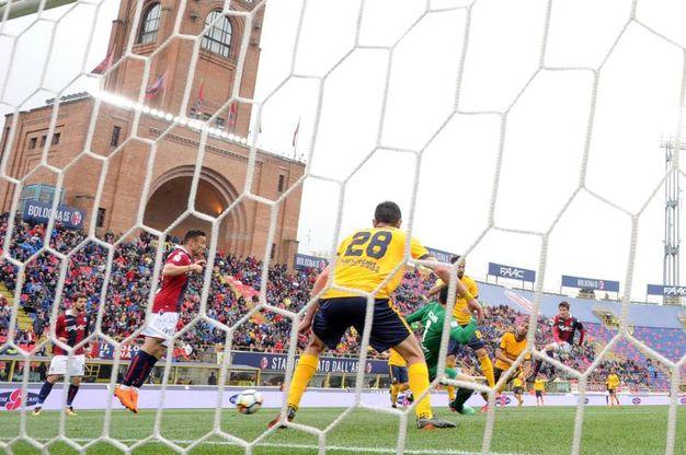 Il gol di Nagy al 49' s.t. (foto LaPresse)