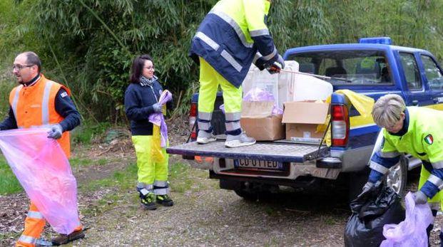 Le operazioni di pulizia del Bosco del Rugareto