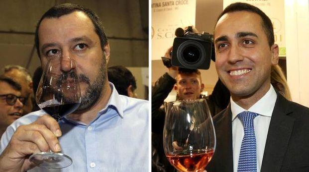 Il leader della Lega Matteo Salvini e il capo politico del M5s Luigi Di Maio (Ansa)