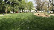 I genitori avevano deciso di sistemare il giardino (foto Schicchi)