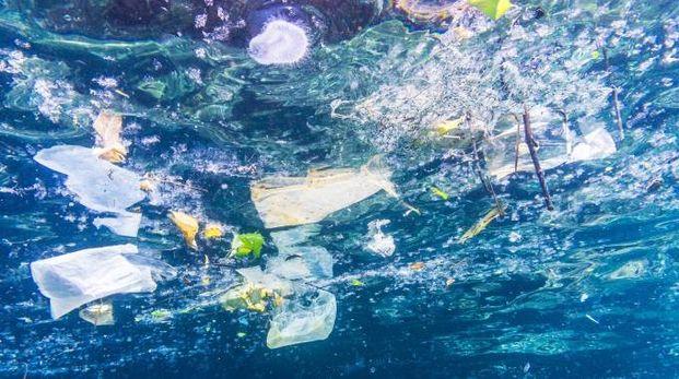 La plastica che inquina gli oceani (Omaggio)
