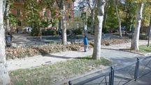 Il parco dove il bambino è stato aggredito