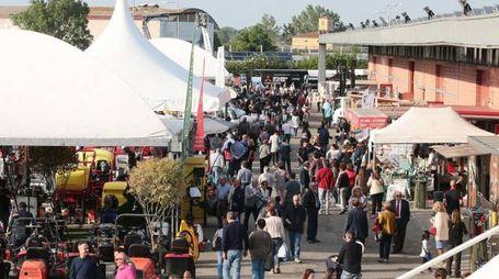 La Fiera di  Modena attira ogni anno migliaia di visitatori